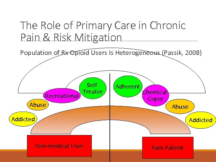 The Role of Primary Care in Chronic Pain & Risk Mitigation Population of Rx