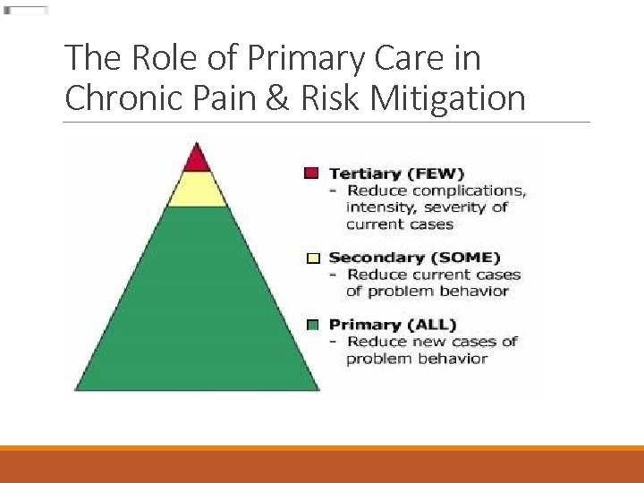 The Role of Primary Care in Chronic Pain & Risk Mitigation