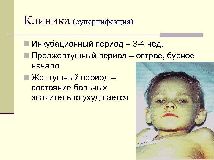 Клиника (суперинфекция) n Инкубационный период – 3 4 нед. n Преджелтушный период – острое,