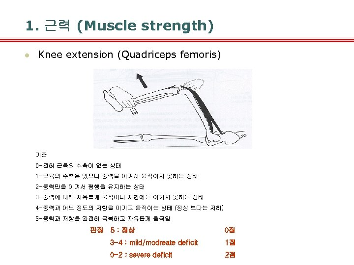 1. 근력 (Muscle strength) l Knee extension (Quadriceps femoris) 기준 0 -전혀 근육의 수축이