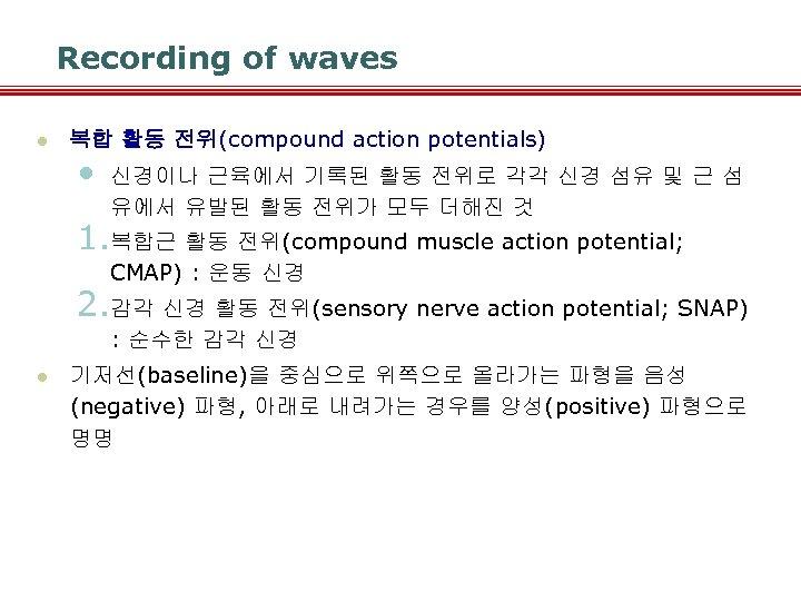 Recording of waves l 복합 활동 전위(compound action potentials) • 신경이나 근육에서 기록된 활동