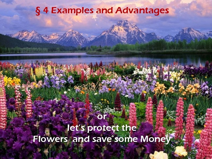 § 4 Examples and Advantages or let's protect the Flowers and save some Money