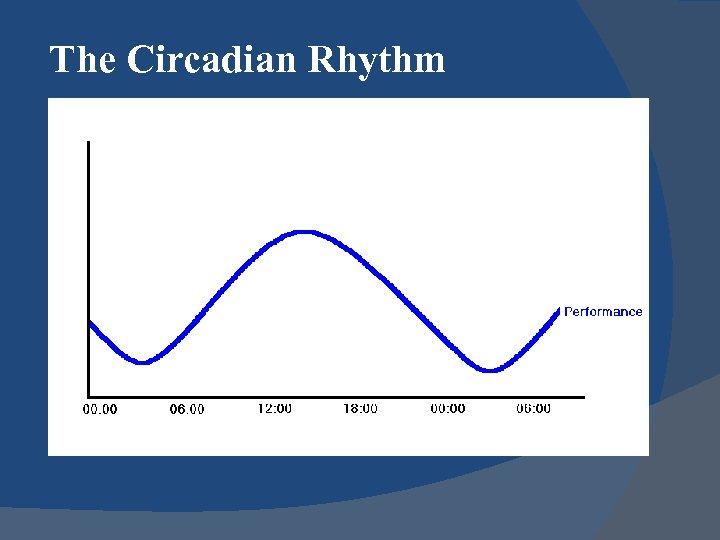 The Circadian Rhythm