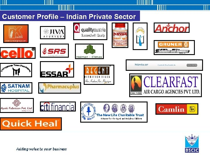 Customer Profile – Indian Private Sector