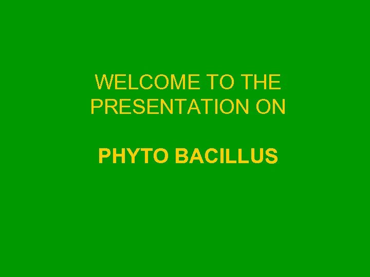 WELCOME TO THE PRESENTATION ON PHYTO BACILLUS