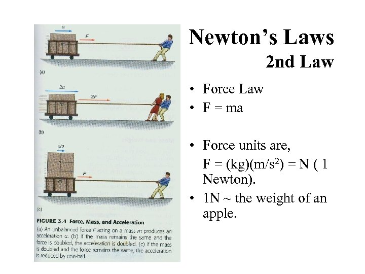Newton's Laws 2 nd Law • Force Law • F = ma • Force