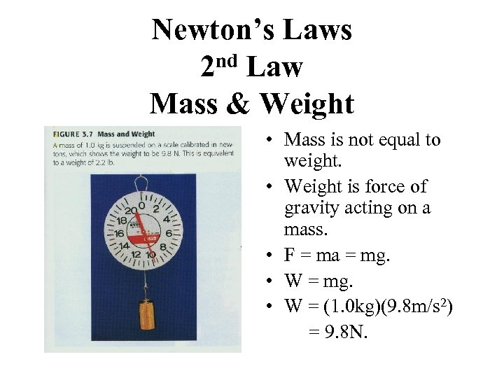 Newton's Laws nd Law 2 Mass & Weight • Mass is not equal to