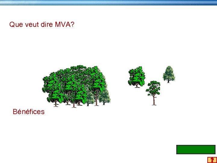 Que veut dire MVA? Bénéfices