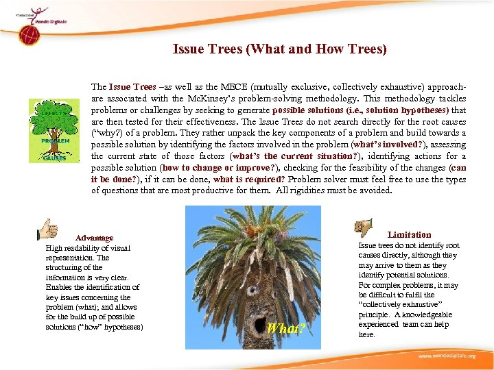 Issue Trees (What and How Trees) The Issue Trees –as well as the MECE