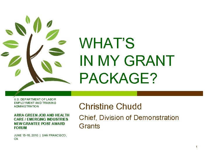 WHAT'S IN MY GRANT PACKAGE? U. S. DEPARTMENT OF LABOR EMPLOYMENT AND TRAINING ADMINISTRATION