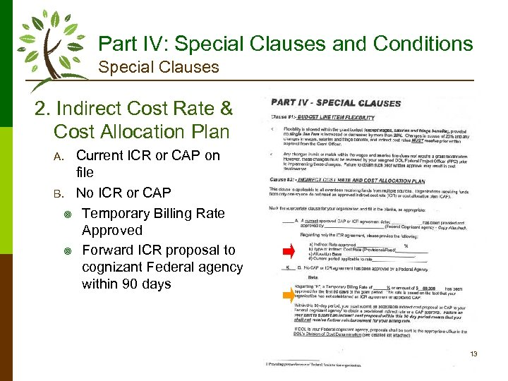 Part IV: Special Clauses and Conditions Special Clauses 2. Indirect Cost Rate & Cost