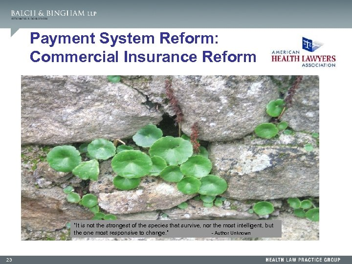 """Payment System Reform: Commercial Insurance Reform """"It is not the strongest of the species"""