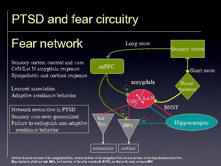 PTSD and fear circuitry Fear network Sensory cortex: context and cues Ce. N/Lat N