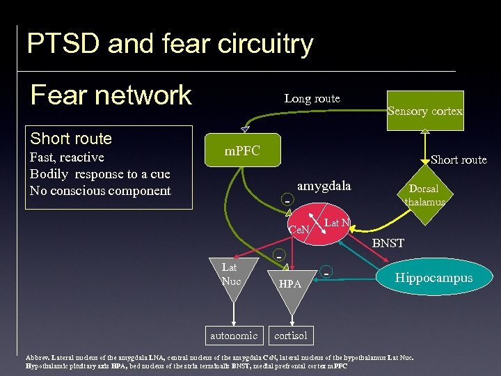 PTSD and fear circuitry Fear network Short route Fast, reactive Bodily response to a