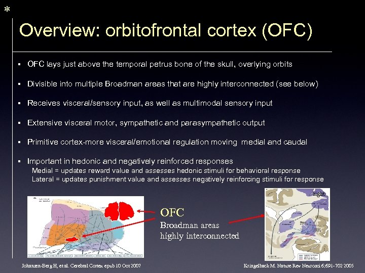 * Overview: orbitofrontal cortex (OFC) § OFC lays just above the temporal petrus bone