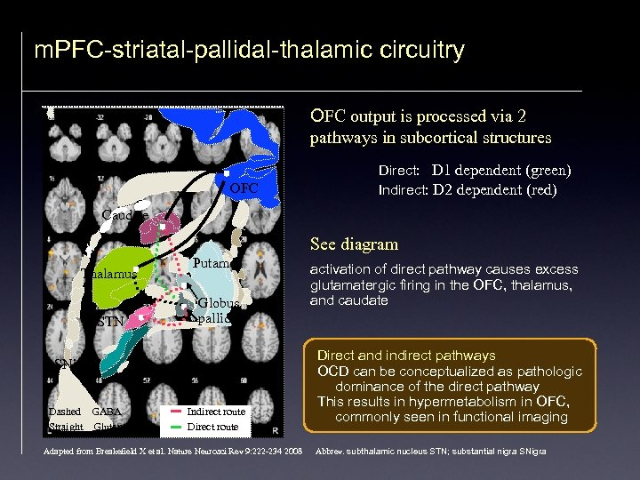 m. PFC-striatal-pallidal-thalamic circuitry OFC output is processed via 2 pathways in subcortical structures OFC