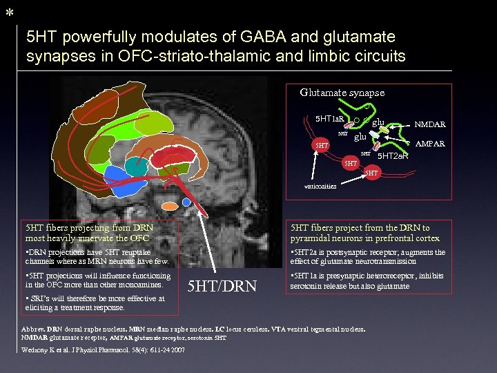 * 5 HT powerfully modulates of GABA and glutamate synapses in OFC-striato-thalamic and limbic