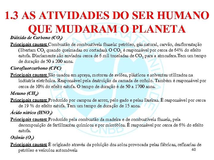1. 3 AS ATIVIDADES DO SER HUMANO QUE MUDARAM O PLANETA Dióxido de Carbono