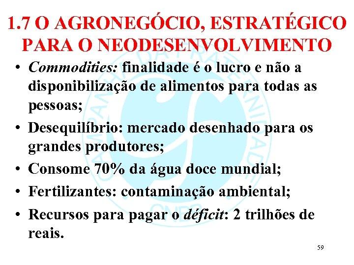 1. 7 O AGRONEGÓCIO, ESTRATÉGICO PARA O NEODESENVOLVIMENTO • Commodities: finalidade é o lucro