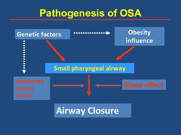 Pathogenesis of OSA Obesity influence Genetic factors Small pharyngeal airway Ventilatory control factors Sleep