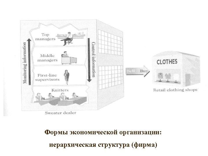 Формы экономической организации: иерархическая структура (фирма)