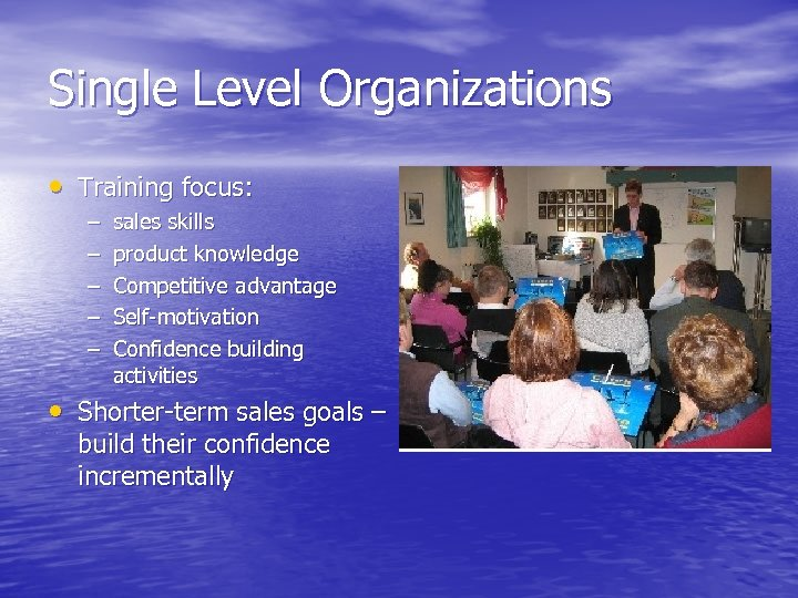 Single Level Organizations • Training focus: – – – sales skills product knowledge Competitive