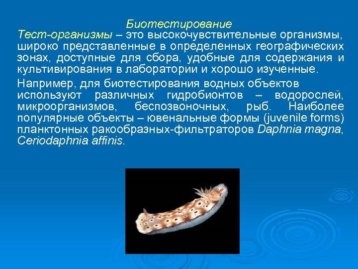 Биотестирование Тест-организмы – это высокочувствительные организмы, широко представленные в определенных географических зонах, доступные для