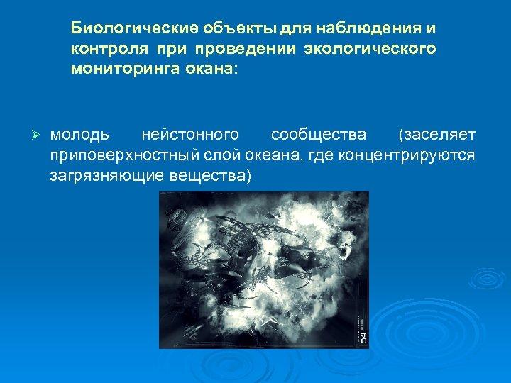 Биологические объекты для наблюдения и контроля при проведении экологического мониторинга окана: Ø молодь нейстонного