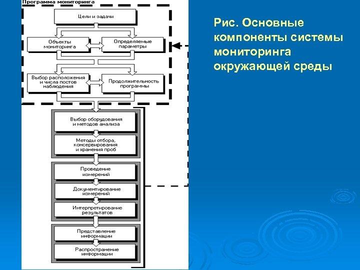 Рис. Основные компоненты системы мониторинга окружающей среды
