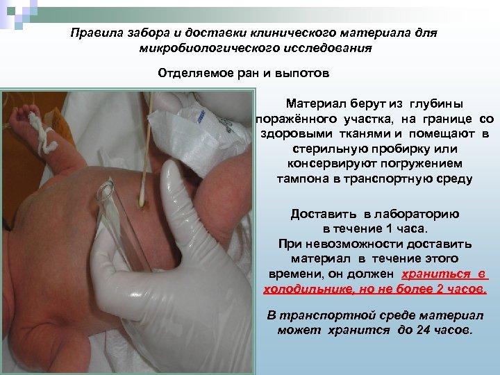 Правила забора и доставки клинического материала для микробиологического исследования Отделяемое ран и выпотов Материал