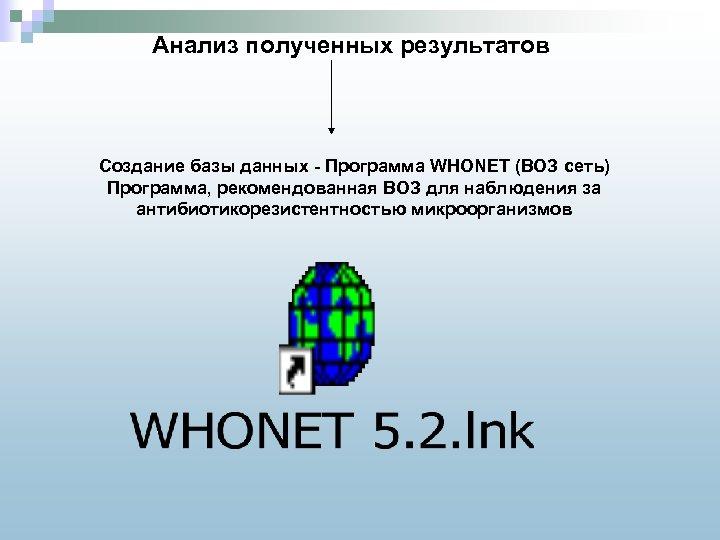 Анализ полученных результатов Создание базы данных - Программа WHONET (ВОЗ сеть) Программа, рекомендованная ВОЗ