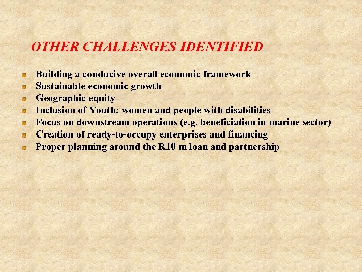 OTHER CHALLENGES IDENTIFIED Building a conducive overall economic framework Sustainable economic growth Geographic equity