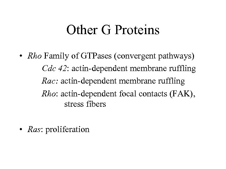 Other G Proteins • Rho Family of GTPases (convergent pathways) Cdc 42: actin-dependent membrane
