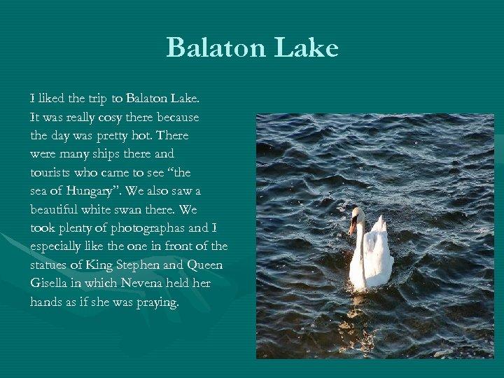 Balaton Lake I liked the trip to Balaton Lake. It was really cosy there