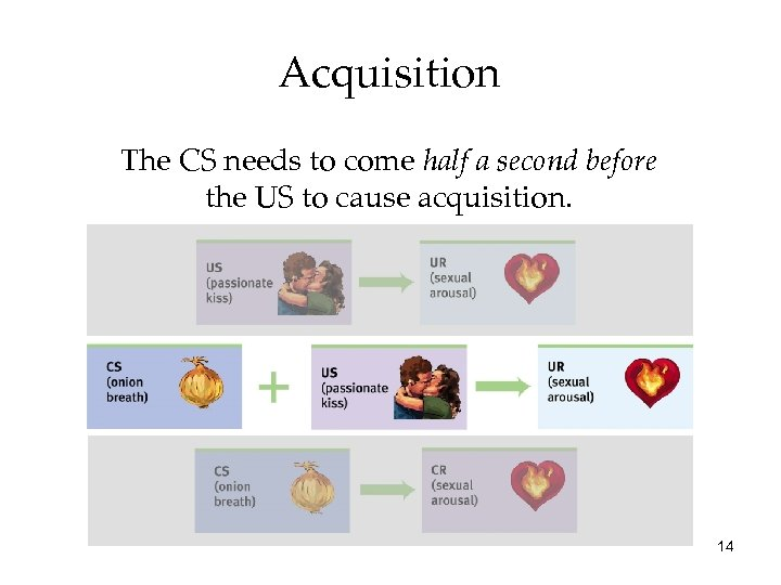 Acquisition The CS needs to come half a second before the US to cause