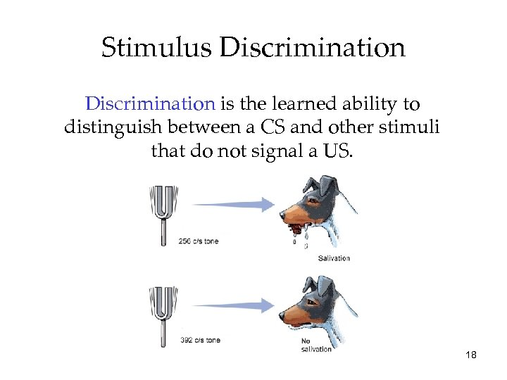 Stimulus Discrimination is the learned ability to distinguish between a CS and other stimuli
