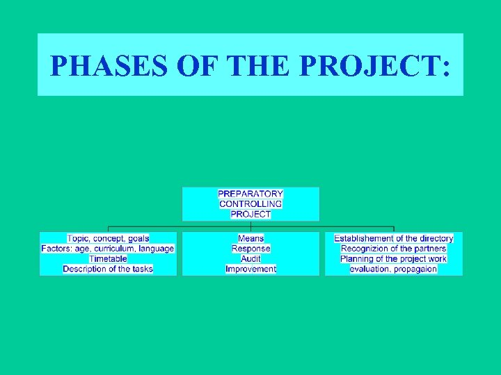 PHASES OF THE PROJECT: