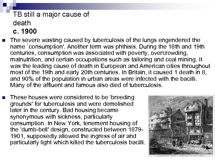 TB still a major cause of death c. 1900 n The severe wasting caused