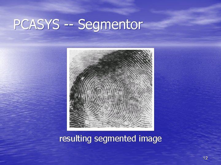 PCASYS -- Segmentor resulting segmented image 12