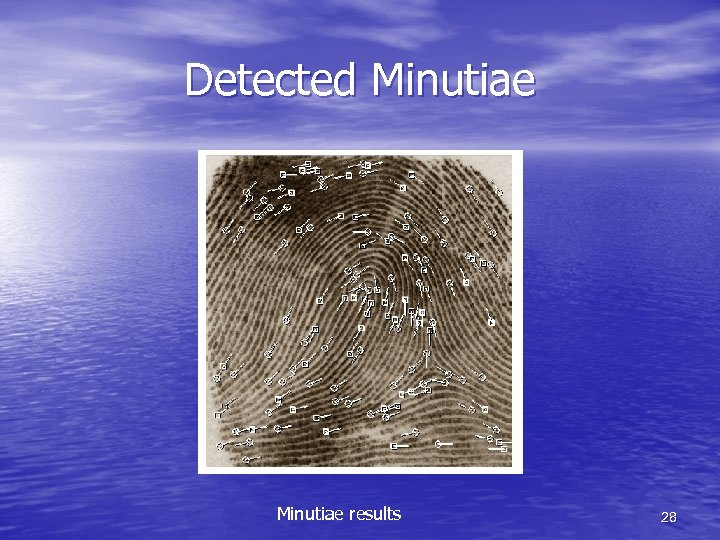 Detected Minutiae results 28