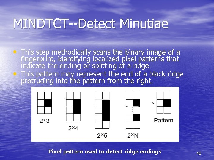 MINDTCT--Detect Minutiae • This step methodically scans the binary image of a • fingerprint,