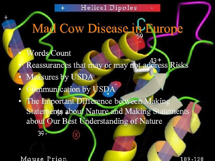 Mad Cow Disease in Europe • • • Words Count Reassurances that may or