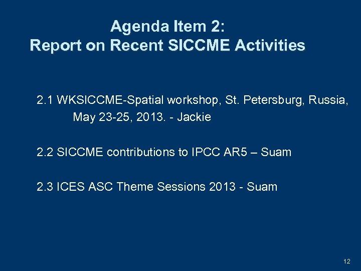 Agenda Item 2: Report on Recent SICCME Activities 2. 1 WKSICCME-Spatial workshop, St. Petersburg,