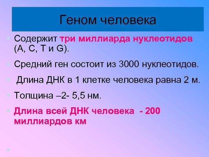 Геном человека § Содержит три миллиарда нуклеотидов (A, C, T и G). § Средний