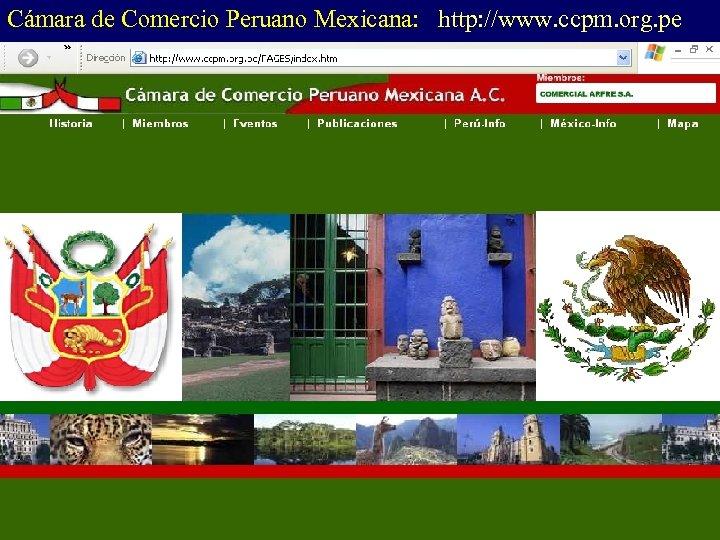 Cámara de Comercio Peruano Mexicana: http: //www. ccpm. org. pe