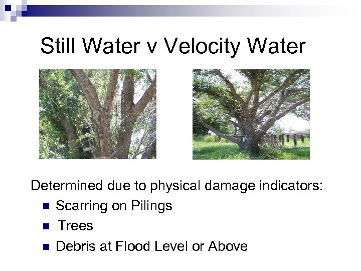 Still Water v Velocity Water Determined due to physical damage indicators: n Scarring