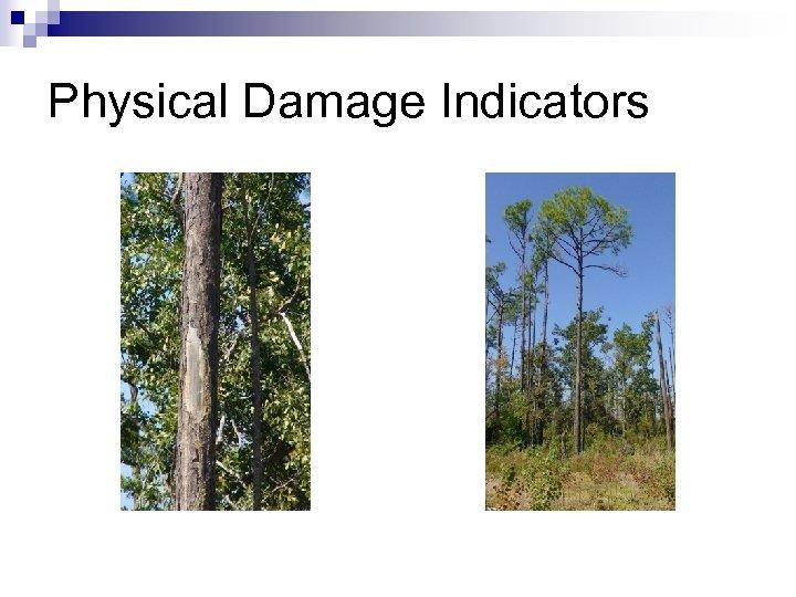 Physical Damage Indicators