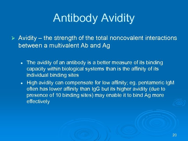 Antibody Avidity Ø Avidity – the strength of the total noncovalent interactions between a