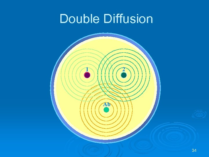 Double Diffusion 1 2 Ab 34