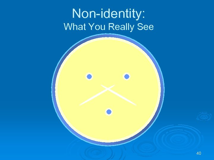 Non-identity: What You Really See 40